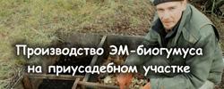 zarya org ua kompostirovanie 06 - Видеолекция: Пермакультурный червятник, или Производство ЭМ-биогумуса на приусадебном участке