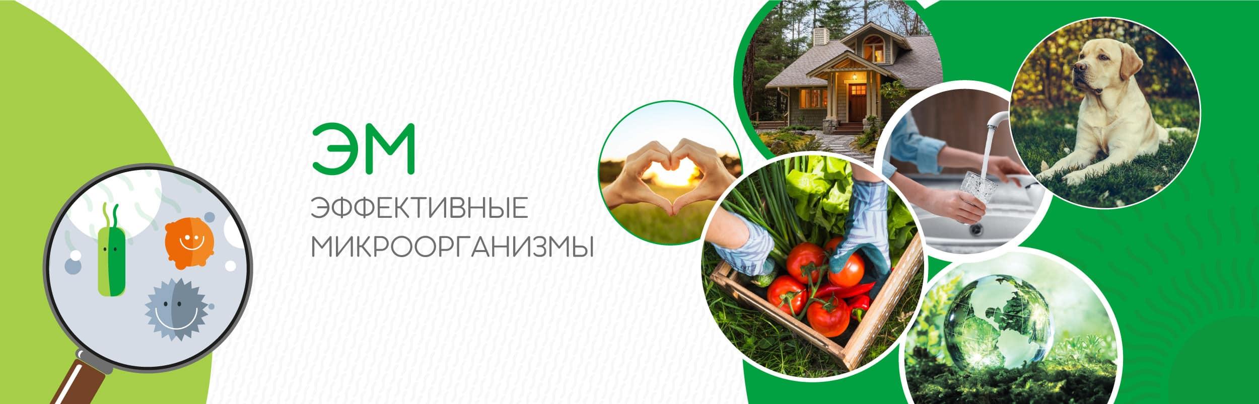 microbioeffect slide - Заря микробиоэффект купить бокаши, эмочки, защита растений, удобрения