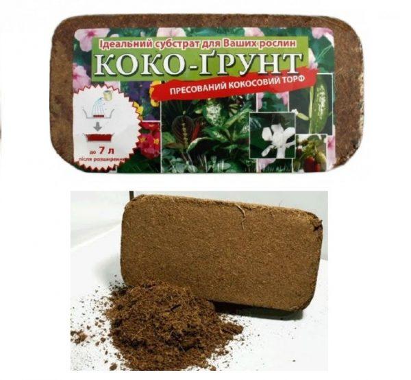 Коко-грунт – коксовый субстрат.