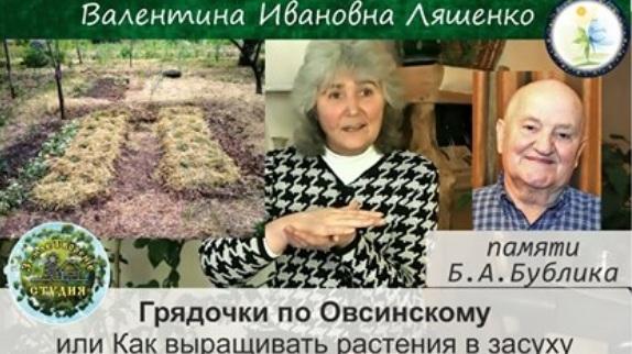 Грядочки по Овсинскому, или Как выращивать растения в засуху