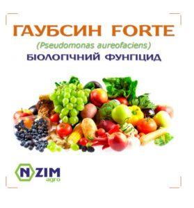 gaupsin 4 279x300 - био-фунгицид ГАУБСИН ФОРТЕ Энзим™
