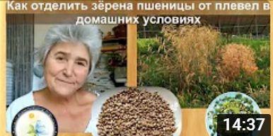 1 2 71s4d7vc7eqnm0fhuiyilmv7ynuavvbr6g7191qjxw0 - Заря микробиоэффект купить бокаши, эмочки, защита растений, удобрения