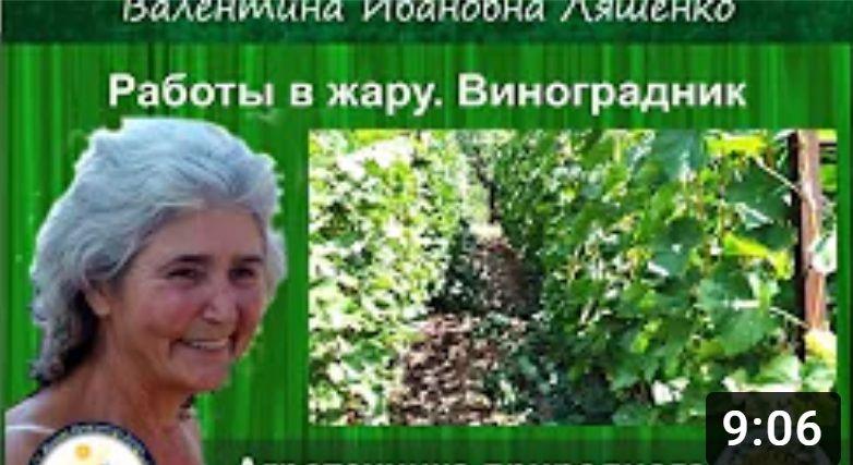 1 71kwaziiqgjtf09f1hes5btry8fbfbkwjpbfmnvndqo - Заря микробиоэффект купить бокаши, эмочки, защита растений, удобрения