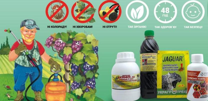 dlya stati 70i8ccww33jmusysou08gyjwdh3xqvr0xsgac8ymte8 - Заря микробиоэффект купить бокаши, эмочки, защита растений, удобрения